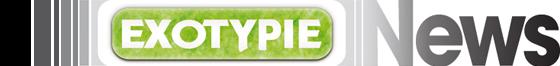 Bandeau newsletter d'Exotypie